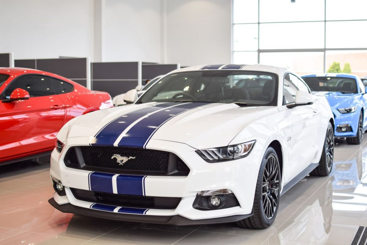 australia 39 s largest mustang showcase new 2019 ford mustang for sale kirrawee south of sydney. Black Bedroom Furniture Sets. Home Design Ideas