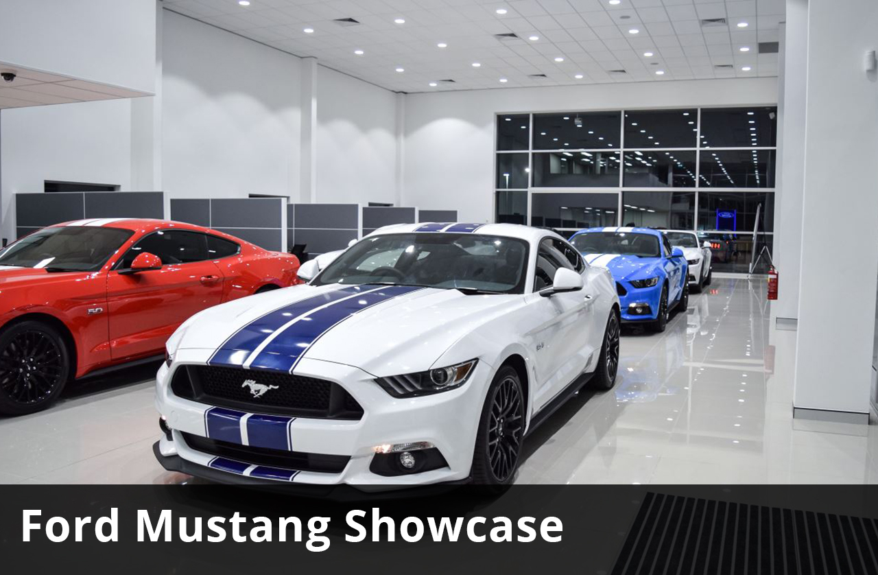 Australia's Largest Ford Mustang Showcase